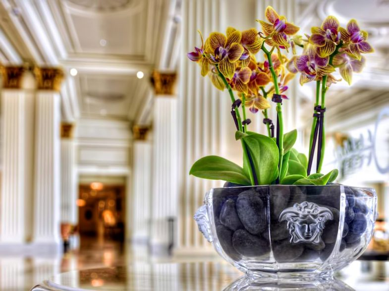 Palazzo Versace Dubai Hotel - Jaddaf Waterfront, Dubai, UAE - Signature Versace Decor