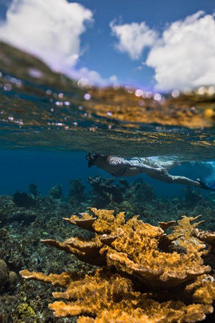 Amanyara Luxury Resort - Providenciales, Turks and Caicos Islands - Snorkeling