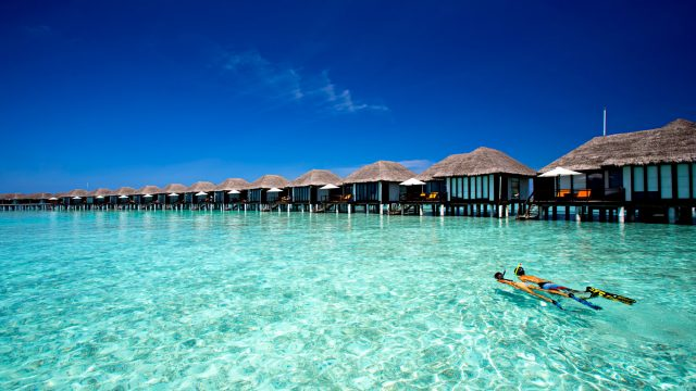 Velassaru Maldives Luxury Resort - South Male Atoll, Maldives - Snorkeling