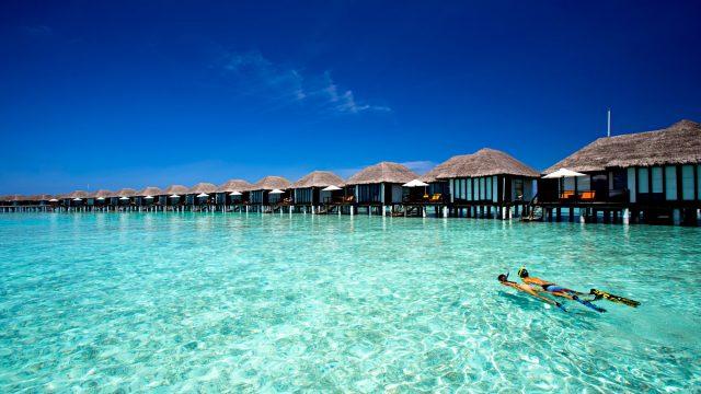 Velassaru Maldives Luxury Resort - South Male Atoll, Maldives - Snorkeling