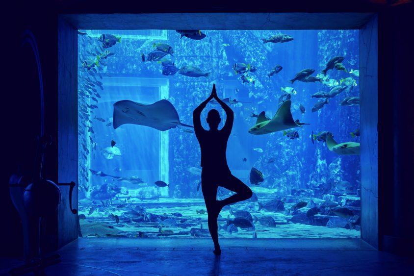 Atlantis The Palm Luxury Resort - Crescent Rd, Dubai, UAE - Yoga at the Lost Chamber Aquarium