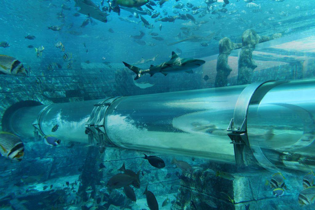 Atlantis The Palm Luxury Resort - Crescent Rd, Dubai, UAE - Tower of Neptune Water Slide Underwater