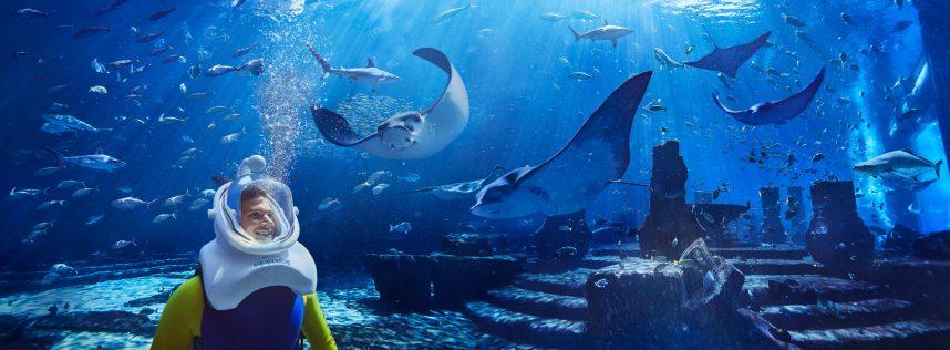Atlantis The Palm Luxury Resort - Crescent Rd, Dubai, UAE - Underwater Aquatrek Xtreme