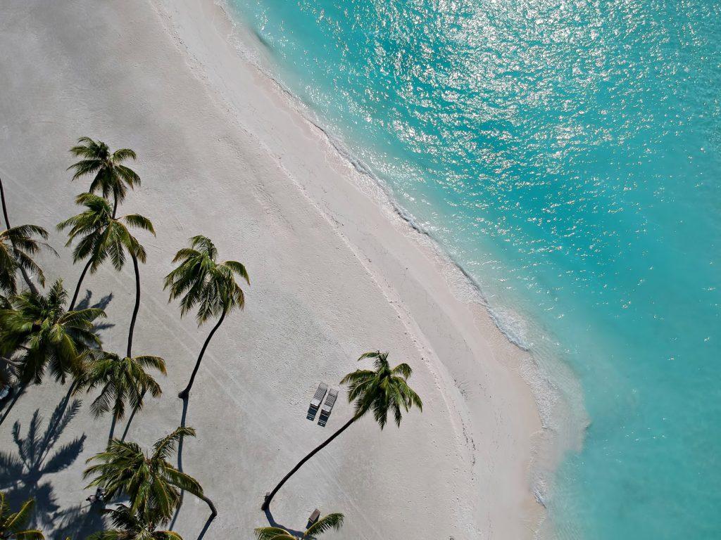 Gili Lankanfushi Luxury Resort - North Male Atoll, Maldives - Beachfront Palm Trees