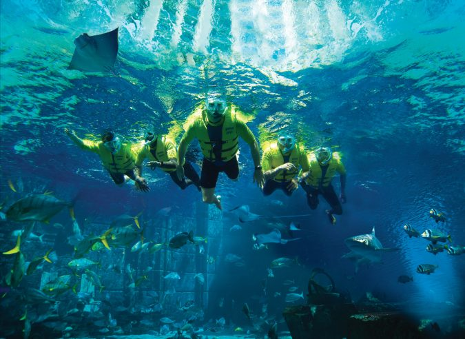 Atlantis The Palm Luxury Resort - Crescent Rd, Dubai, UAE - Ultimate Snorkel