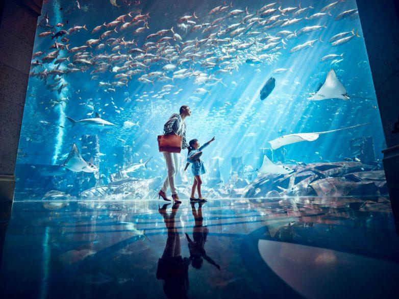 Atlantis The Palm Luxury Resort - Crescent Rd, Dubai, UAE - Underwater Aquarium View Glass Wall