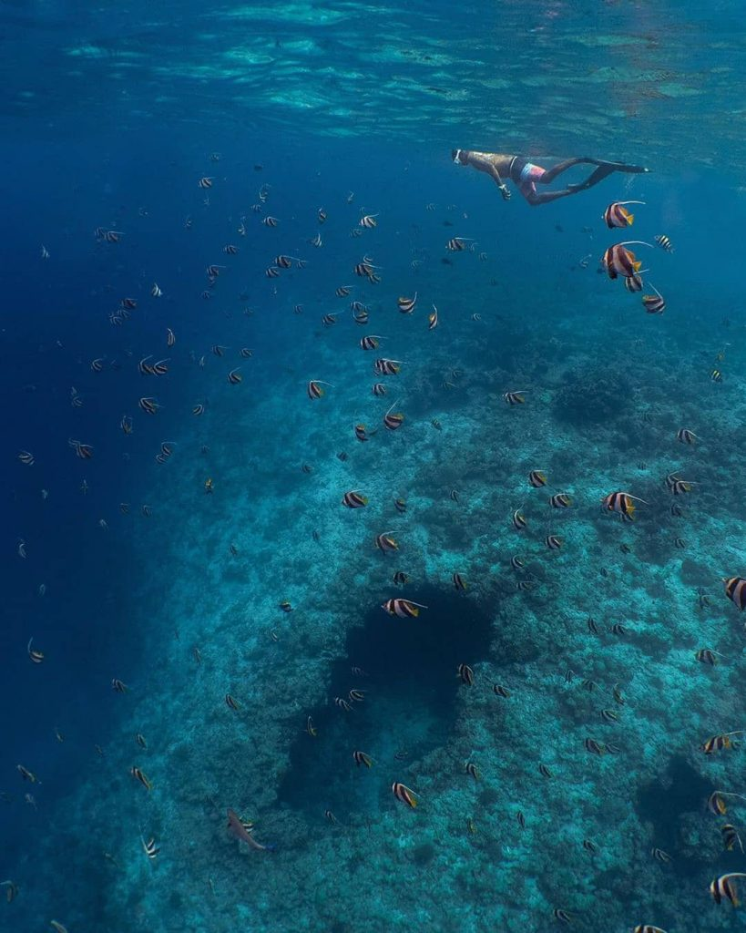 Amilla Fushi Luxury Resort and Residences - Baa Atoll, Maldives - Ocean Watersports Snorkeling