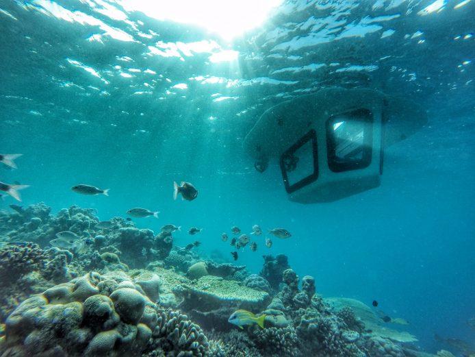 Amilla Fushi Luxury Resort and Residences - Baa Atoll, Maldives - Penguin Glass Bottom Boat