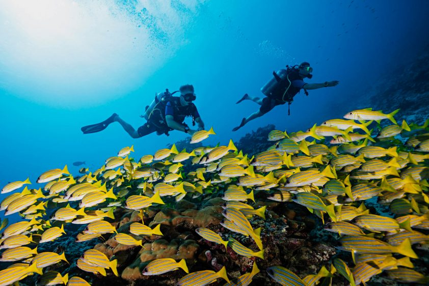 One&Only Reethi Rah Luxury Resort - North Male Atoll, Maldives - Scuba Diving
