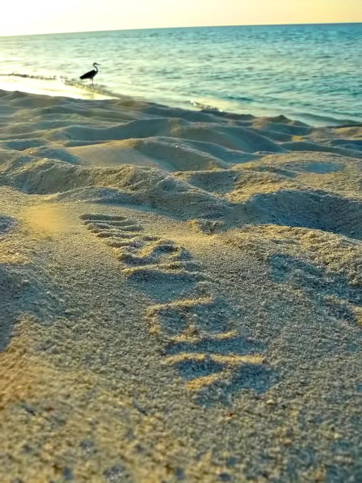 Velassaru Maldives Luxury Resort - South Male Atoll, Maldives - Beach Sand