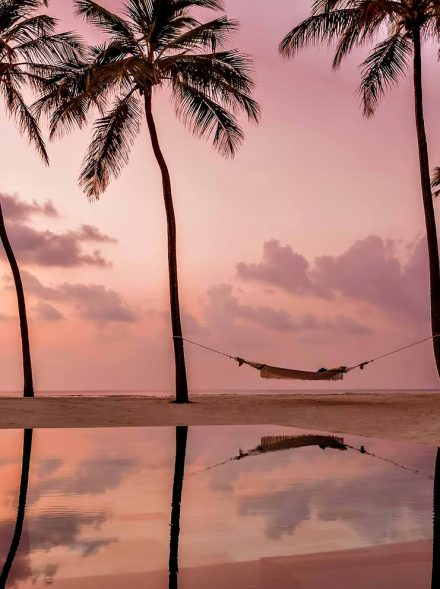 One&Only Reethi Rah Luxury Resort - North Male Atoll, Maldives - Beach Palm Tree Hammock Sunset