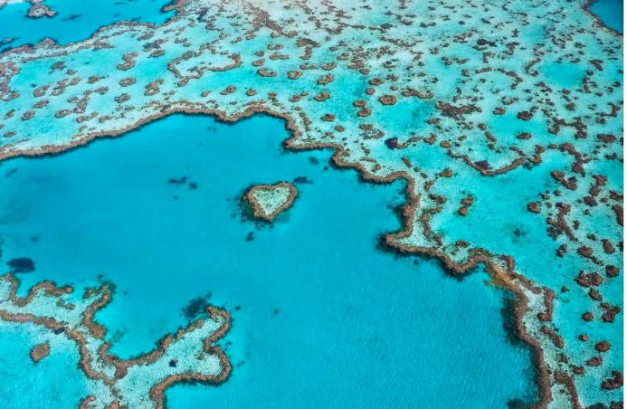 InterContinental Hayman Island Resort - Whitsunday Islands, Australia - Great Barrier Heart Shaped Reef