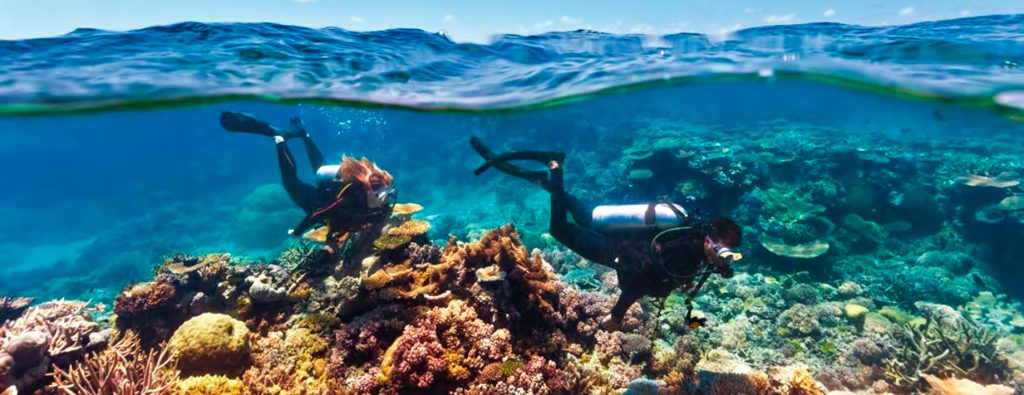 InterContinental Hayman Island Resort - Whitsunday Islands, Australia - Scuba Diving Corel Reef