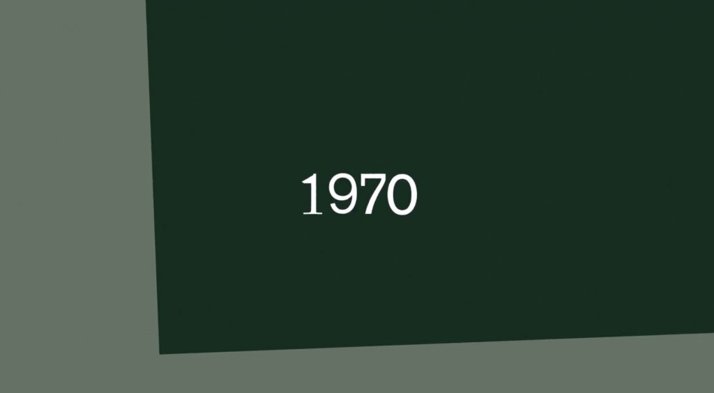 Camaleonda Classic Sofa Collection B&B Italia - Mario Bellini - 1970